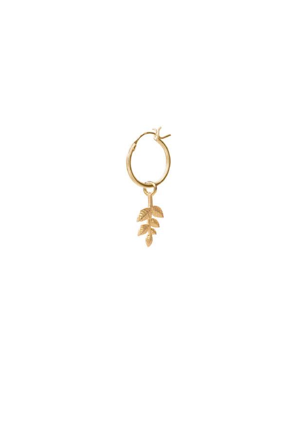 Oorbel Hoop Branch_gold_voor
